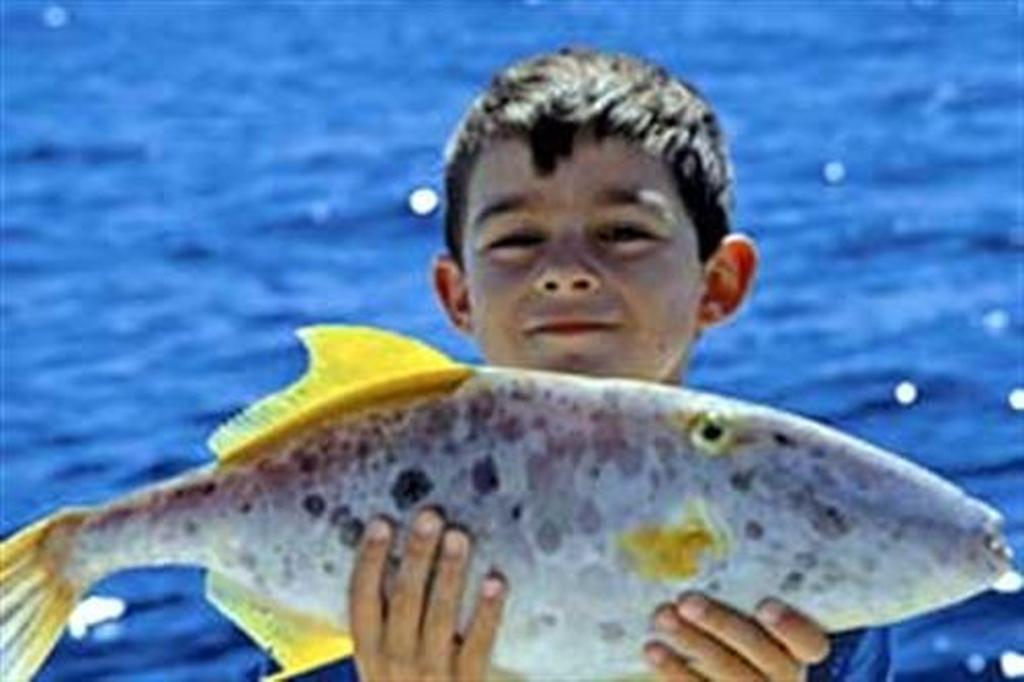 Monsters of the deep - www boatsales com au