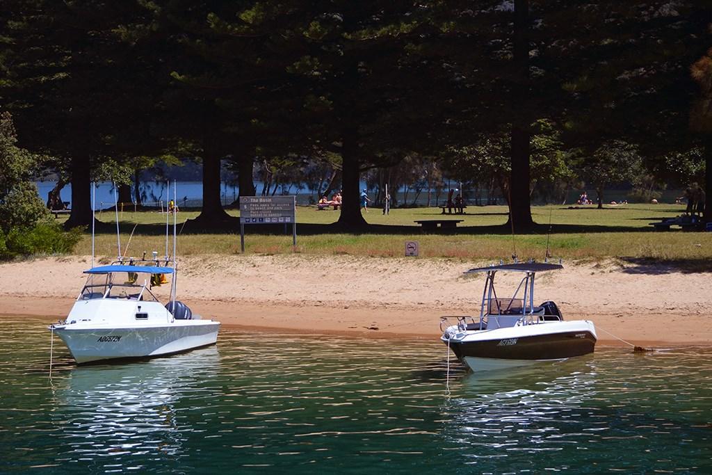 Sydney shark warning - www boatsales com au