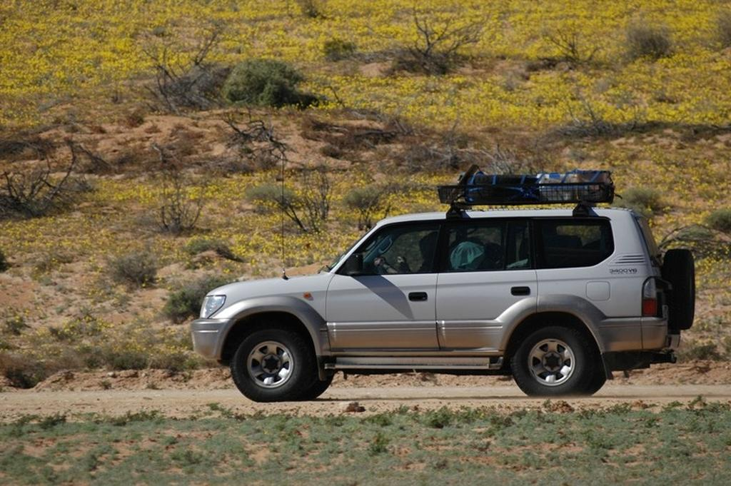 Buying a used Toyota Prado, 1996-2008 - www redbook com au
