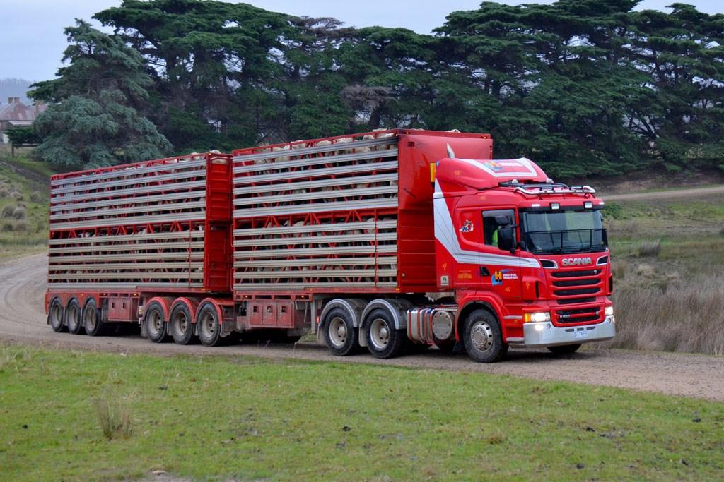 Scania R 560: Operator Review - www trucksales com au