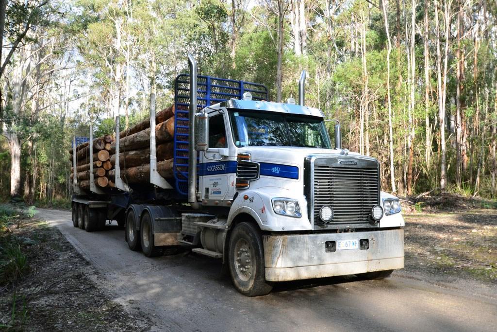 Review: Freightliner Coronado FL114 - www trucksales com au